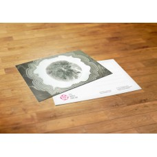 Postcard - Mexico - Geraldina Rodriguez