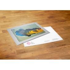 Postcard - Netherlands - Yusuf Akkaya