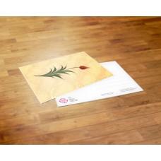 Postcard - Turkey - Sinem Ergün